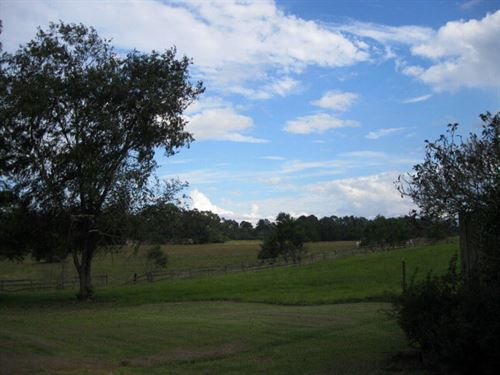 Beautiful Pasture With Pond & Barn : Centreville : Wilkinson County : Mississippi