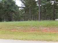 Luxurious Lot With Agreage : Perry : Peach County : Georgia