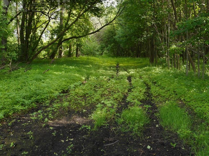 Premier Hunting And Recreational : Belgium : Ozaukee County : Wisconsin