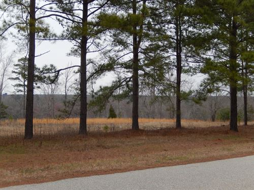 Luxurious Lot With Lots Of Acreage : Perry : Peach County : Georgia