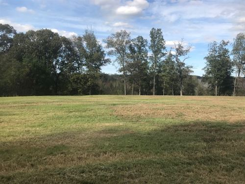 Luxurious Lot With Lots Of Acres : Perry : Peach County : Georgia