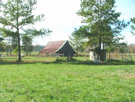 5.3 Acres : Woodville : Marshall County : Alabama