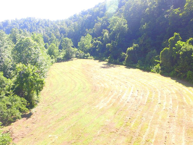 Large Acreage Sporting Tract : Erwin : Unicoi County : Tennessee