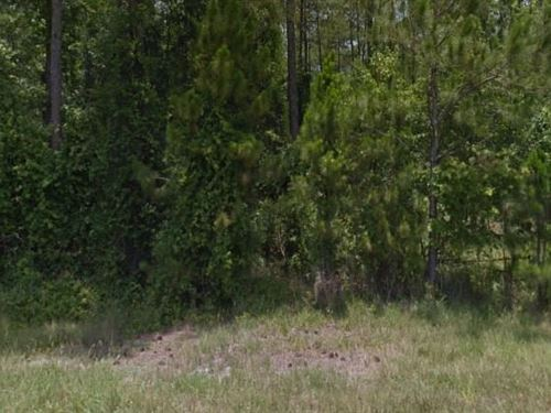 Volusia County, Fl $48,000 Neg : Deland : Volusia County : Florida