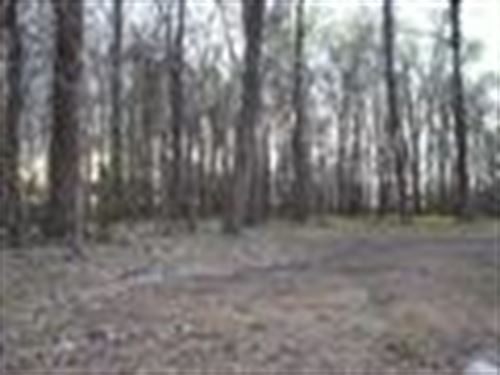 Great Lot To Build Your Lakehouse : Woodville : Wilkinson County : Mississippi