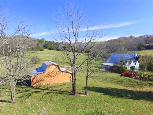 56 Acre Farm In Santa Fe Tn : Santa Fe : Maury County : Tennessee