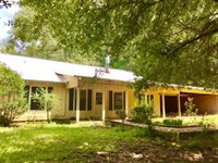 Bring Your Horses & Mules : Woodville : Wilkinson County : Mississippi