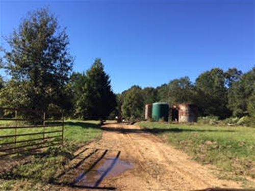 65.466 Ac Hunting Tract In Natchez : Natchez : Adams County : Mississippi