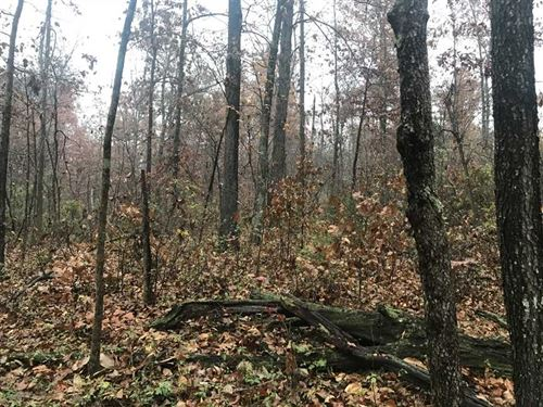 Spencer County Hunter's Paradise : Chrisney : Spencer County : Indiana