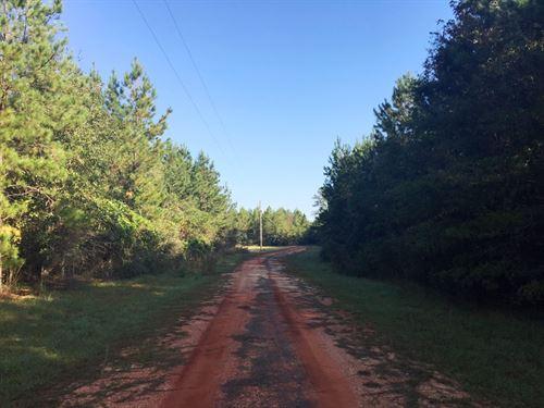 Sardis Church Road North : Atmore : Escambia County : Alabama