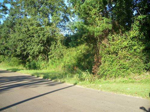 Lot 4 Is 6.70 Acres : Centreville : Wilkinson County : Mississippi