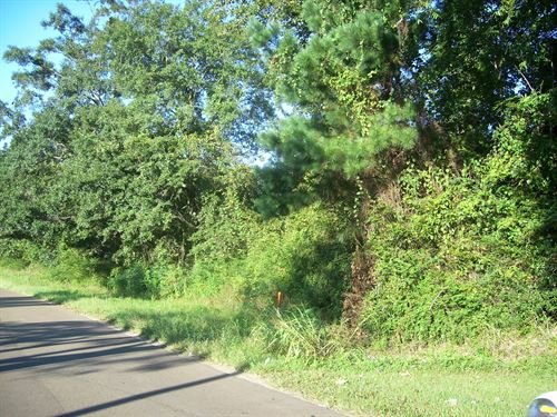 Lot 6 Is 4.00 Acres M/L : Centreville : Wilkinson County : Mississippi