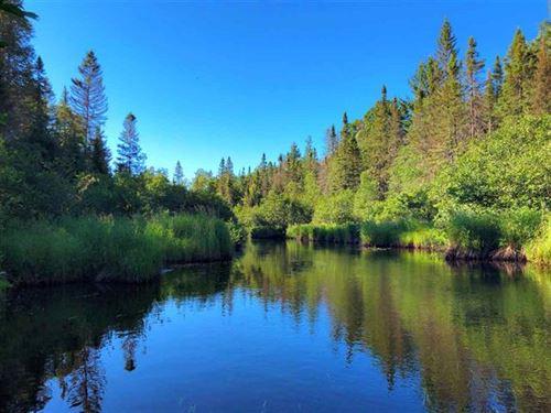 Mitchigan River Wonder 1105620 : Republic : Iron County : Michigan