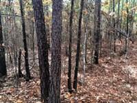 Turner Lane : Dry Branch : Twiggs County : Georgia