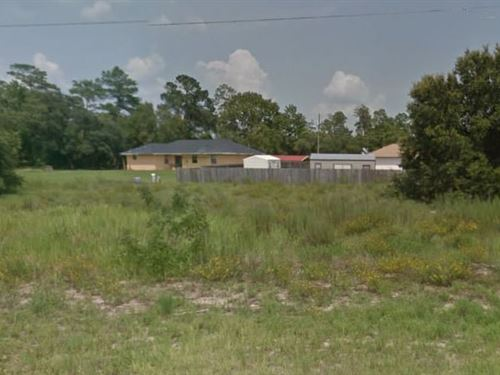 Marion County, Fl $19,500 Neg : Ocala : Marion County : Florida