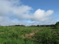 10 To 20 Acres Of Pure Heaven : Brooksville : Hernando County : Florida