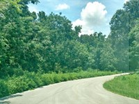 5 Acres Mol In Savannah Oaks : Brooksville : Hernando County : Florida