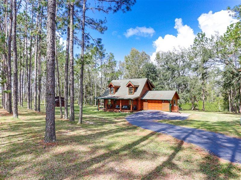 Log Home On 3.4 Acs - Bayhead Road : Dade City : Pasco County : Florida