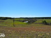 Bunkum Creek Recreation Property : Nauvoo : Winston County : Alabama