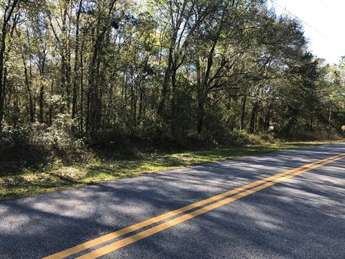 Of Days Gone By, On Preston Rd. : Brooksville : Hernando County : Florida