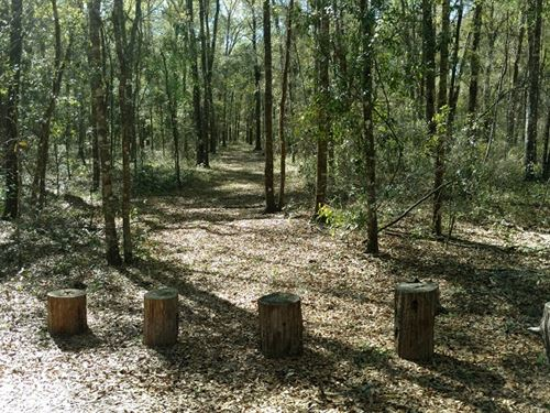 Own A Piece Of History, On Preston : Brooksville : Hernando County : Florida