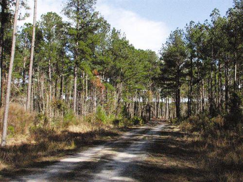 Angel Tract 2 : Yemassee : Hampton County : South Carolina