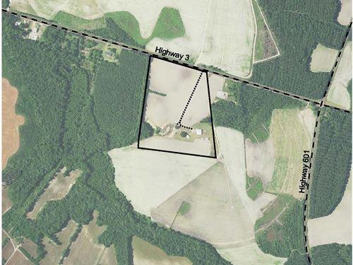 Harper Tract : Estill : Hampton County : South Carolina