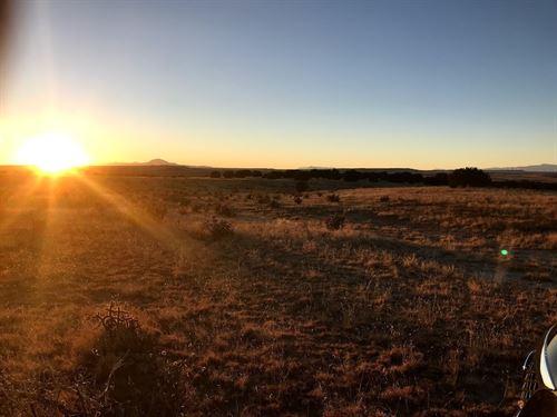 150 Acres In Trinidad, CO : Trinidad : Las Animas County : Colorado