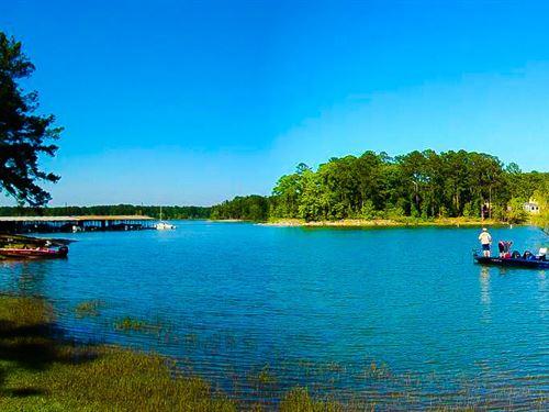 .56 Acres In Brookeland, TX : Brookeland : Jasper County : Texas