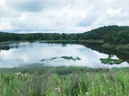 Beautiful 80 Acres : Coalgate : Coal County : Oklahoma