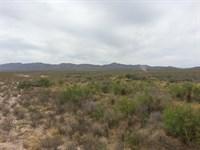 160 Acres Rec, Property, $395/Ac : Fabens : Hudspeth County : Texas