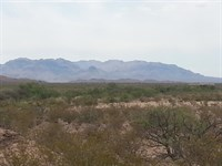 20 Acre Foreclosure Only $148/Mo : Fabens : Hudspeth County : Texas