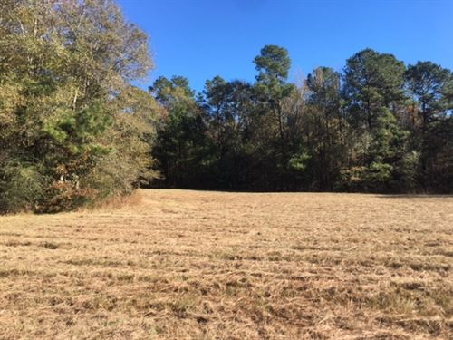 8 Acres In Franklin County : Meadville : Franklin County : Mississippi