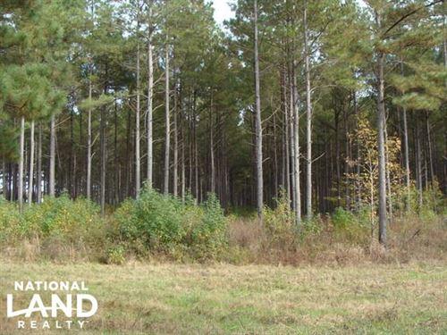 142 Acre Hunting & Crp Property : Hazen : Prairie County : Arkansas