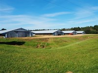 Poultry Broiler Farm 53 Acres Resid : Jayess : Walthall County : Mississippi