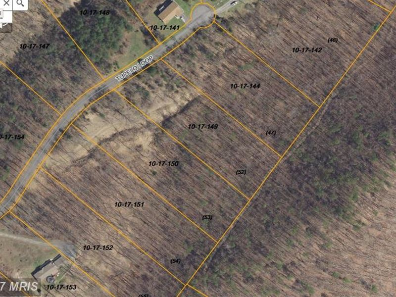 Privacy In Well Kept Subdivision : Springfield : Hampshire County : West Virginia