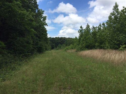 Multiple Use Land Available : Des Arc : Prairie County : Arkansas