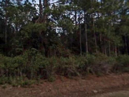 St Johns County, Fl $40,000 Neg : Hastings : Saint Johns County : Florida