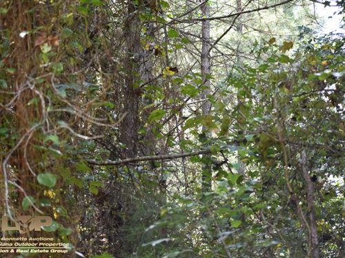 Bastrop La Land For Sale : Bastrop : Morehouse Parish : Louisiana