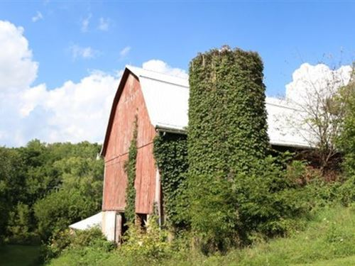 Amazing Views From Diversified Farm : Avoca : Iowa County : Wisconsin