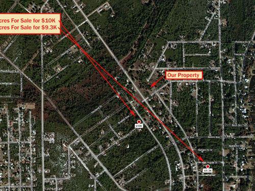 Half-Acre Lot In Lake Placid : Lake Placid : Highlands County : Florida