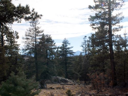 2765245 - Beautiful 5.76 Acre Lot : Cotopaxi : Fremont County : Colorado