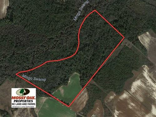 65 Acres of Hunting And Farm Land : Dunn : Sampson County : North Carolina
