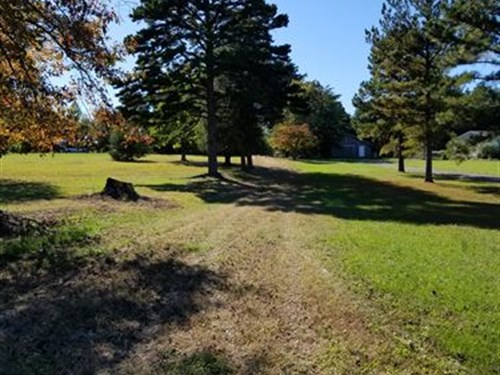 Great Timber & Wildlife Property : Hurt : Pittsylvania County : Virginia