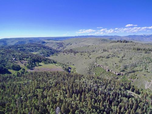 Wooded Mountain Lot With Utilities : Cimarron : Gunnison County : Colorado