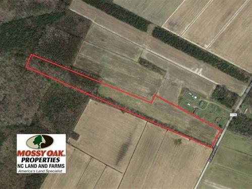 Under Contract, 13 Acres of Farm : Shiloh : Camden County : North Carolina