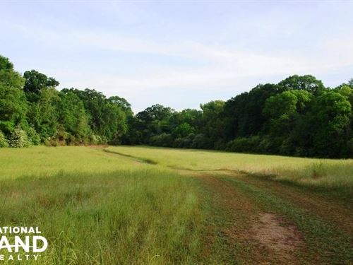 Havana Hunting/ Mini-Farm Opportuni : Havana : Hale County : Alabama