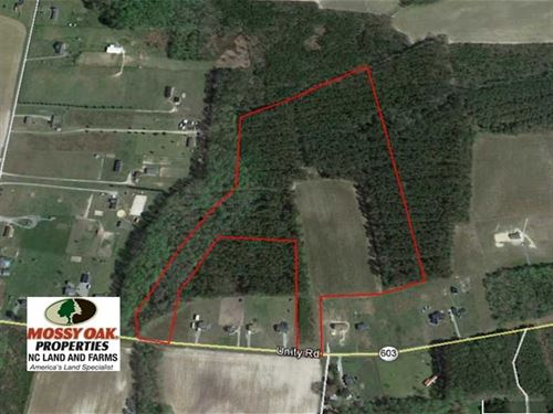 34.114 Acres of Open Timber Land : Zuni : Southampton County : Virginia