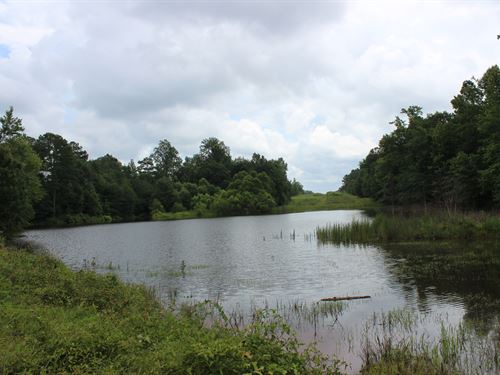 Recreational Property Or Homesite : Covington : Newton County : Georgia
