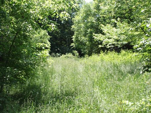 Country Home Site With A Small Pond : St. Paul : Saint Charles County : Missouri